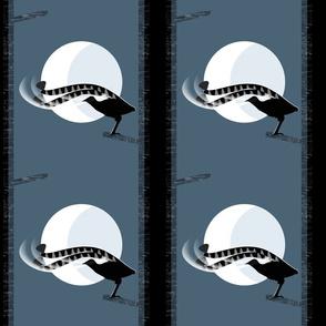 Lyrebird in the Moonlight