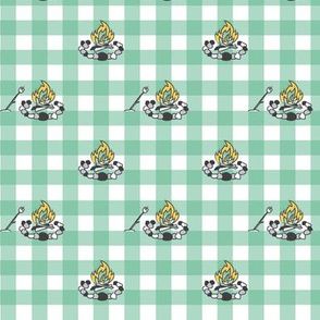 Campfire on Mint Gingham
