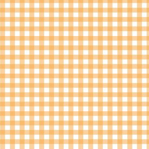 Clementine Gingham