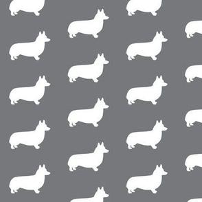 Grey Welsh Corgi