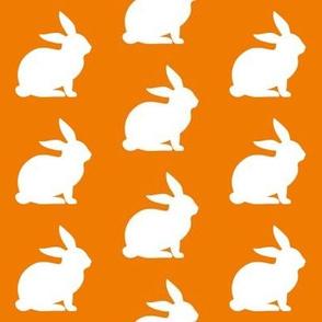 Orange Rabbits