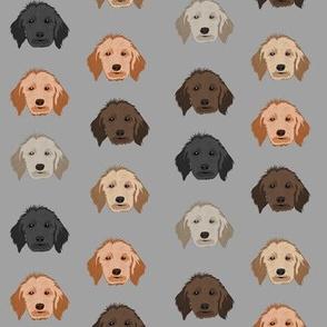 golden doodle dog fabric - dog head fabric, dogs, dog coats, dog breeds, dog fabric - grey