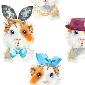 Guinea Pig Chic (white) LARGER scale