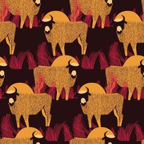 Herd of bison in grass