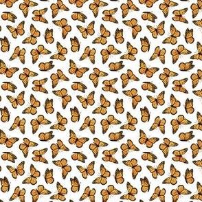 (micro) Monarch butterflies - OG - C20BS