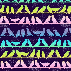 Rainbow Birds silhouette
