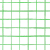 Wide Painted Green Grid