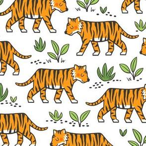 Jungle Tiger on White