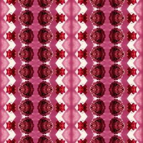 rose reflection pink