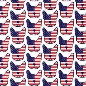The original American gentleman - Boston Terrier American flag