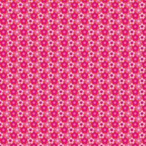 Mini Mod Daisies Pinks on Orange