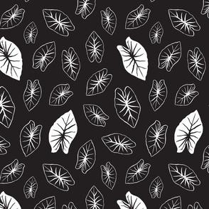 Kalo Leaf - Black and White