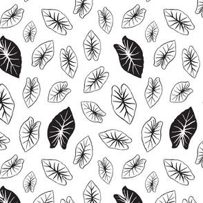 Kalo Leaf - White and Black
