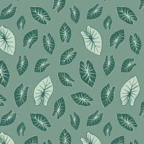 Kalo Leaf - Sage Green