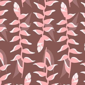 Heliconia Flower - Brown and Pink