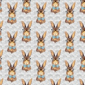 "2"" BUNNY WITH GLASSES /  STRIPES"