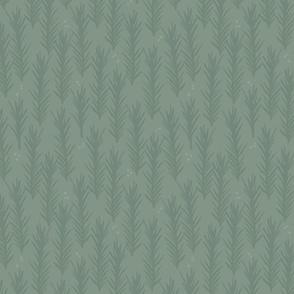 Dark Sage Spruce
