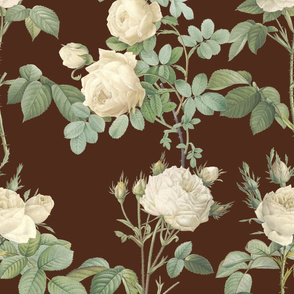 Les Roses de Redoute ~ Double Stripe ~  Cream on Terroir