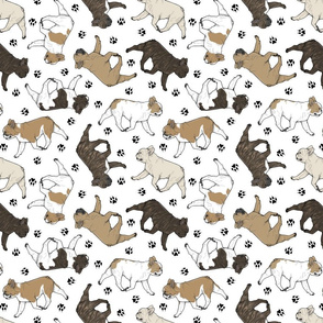 Trotting French Bulldogs and paw prints - white