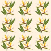 Birds of Paradise - Tropical Strelitzia #1 Creamy Beige, medium