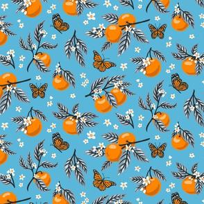 Oranges & Monarch Butterflies