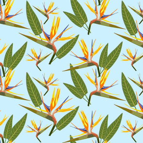 Birds of Paradise - Tropical Strelitzia #2 Sky Blue, large