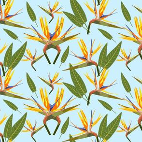 Birds of Paradise - Tropical Strelitzia #3 Sky Blue, large
