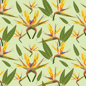 Birds of Paradise - Tropical Strelitzia #3 Cool Mint Green, large
