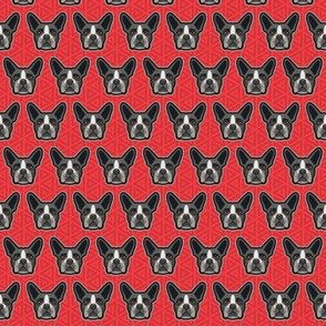 Dog Faces Geo Boston Mini Red