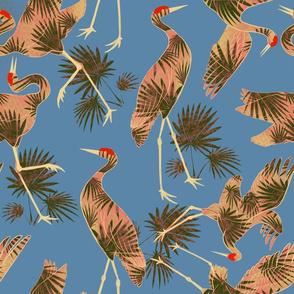 Tropical Sandhill Crane