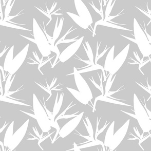 Birds of Paradise - Tropical Strelitzia #4 White Silhouettes on Silver Grey, large