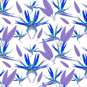 Birds of Paradise - Tropical Strelitzia #3 Blues on White, large