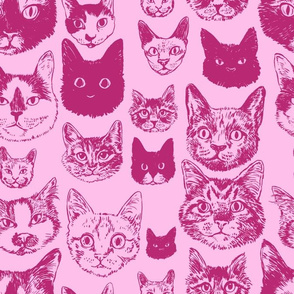 cats - pink +  wine