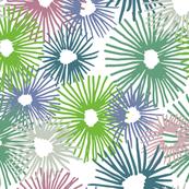 mixed-starbursts