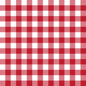 "1/2"" Gingham Check (red + white)"