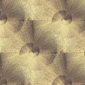 Goldmuschel