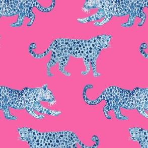 Leopard Parade Blue on Hot Pink