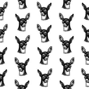Cute Fawn Deer Pattern