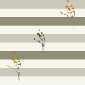 Stripes, grasses