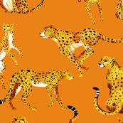 Pattern Guepard_01