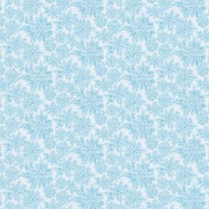 Blue Christmas- Poinsettia