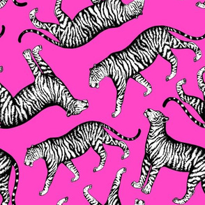 Tigers (Magenta and White)