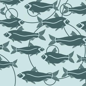 Fishes of Lake Balaton