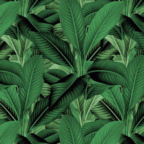 Palm In Palm   Jungle Green ~ Evening Shade