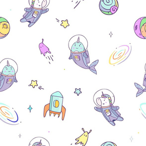 Cosmic adventures with Unicorn and Narwhal