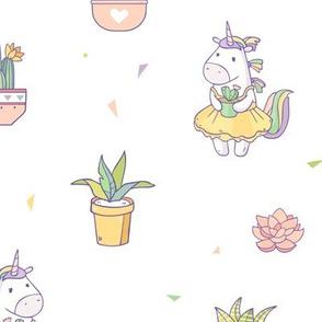 Unicorn  succulents lover