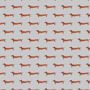 Sausage Dogs Grey