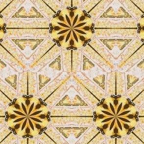 Sea Star, Yellow White Black