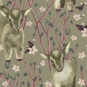 Little goats and nature in spring
