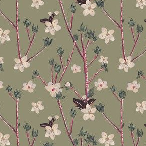 Plum tree blossoms and budding plant